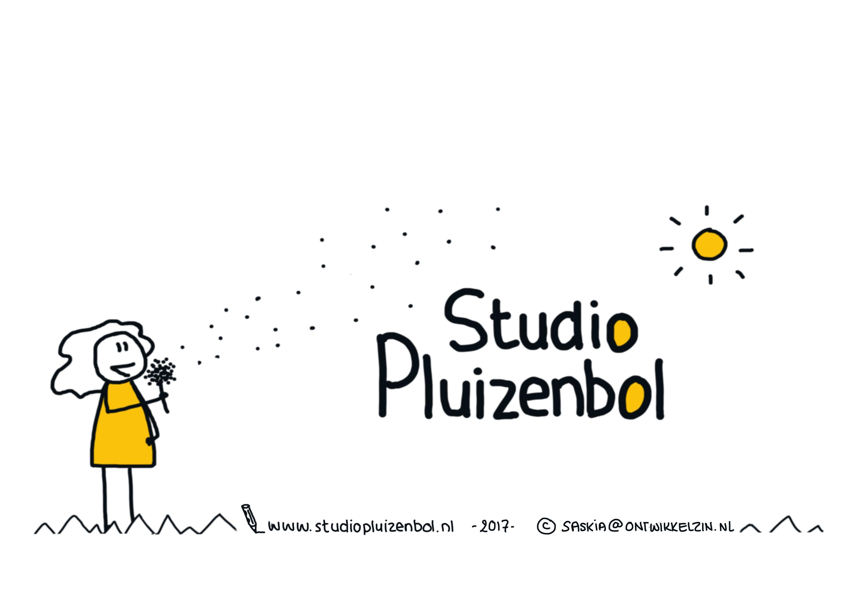 Studio Pluizenbol
